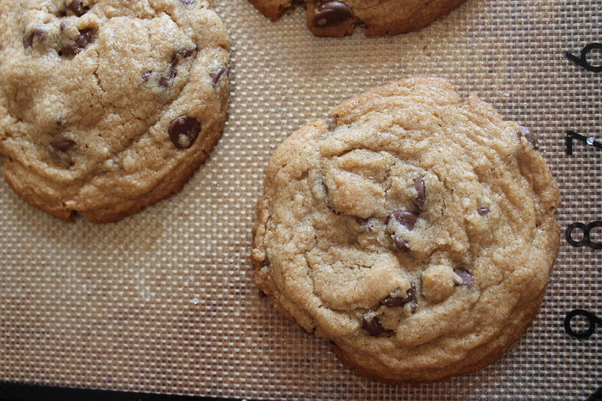Brown Butter Chocolate Chip Cookies (Gluten Free)