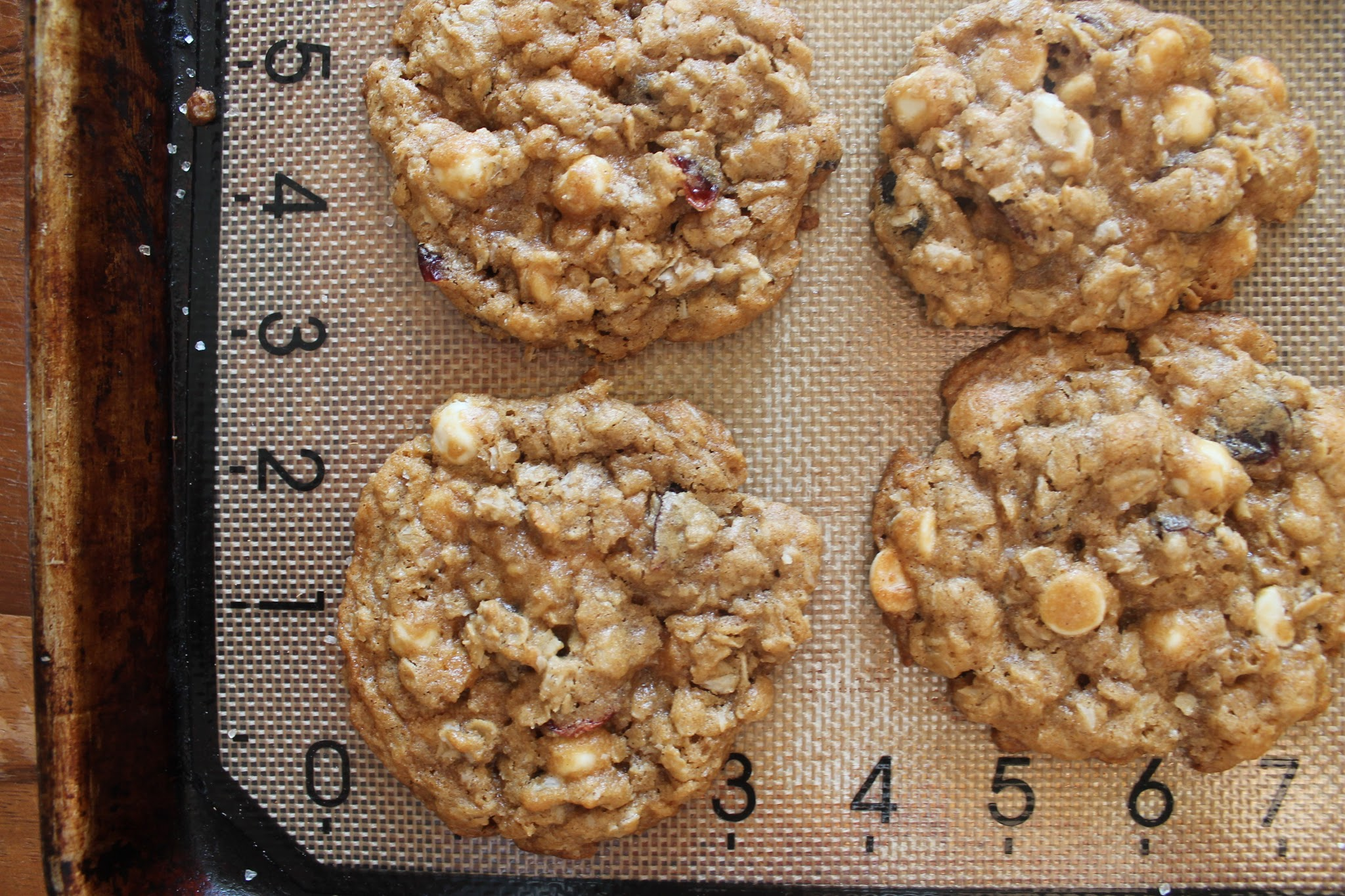 Oatmeal White Chocolate Cranberry Cookies (Gluten Free)